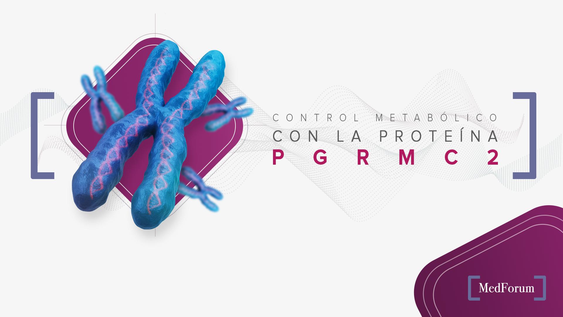 Control metabólico con la proteína PGRMC2